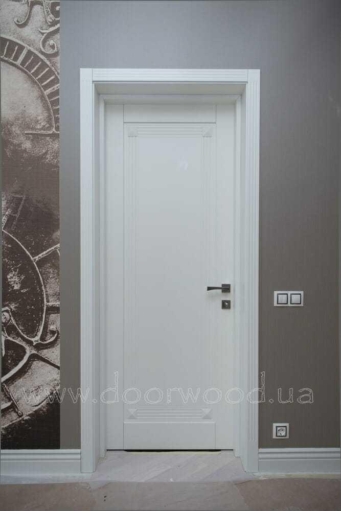 Дверне портфоліо 15