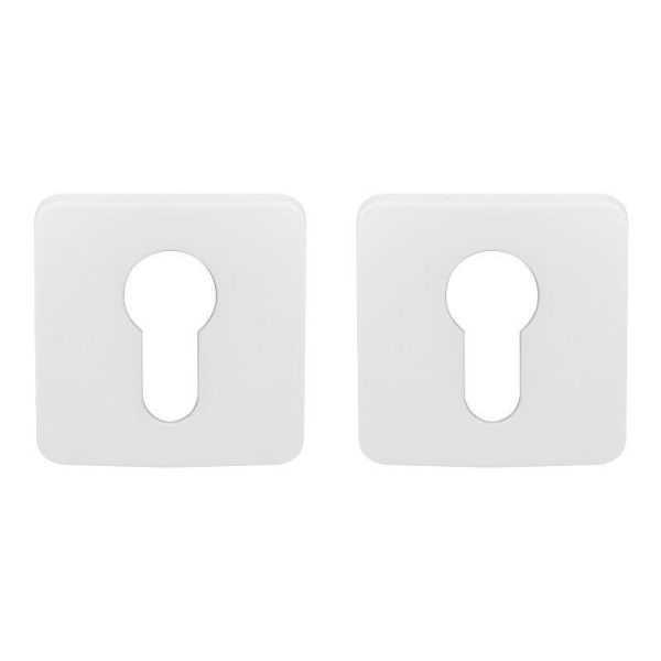 dvernaya nakladka colombo design pt 13 matovyj belyj pod klyuch roboquattros 47052 5fd6848179ade