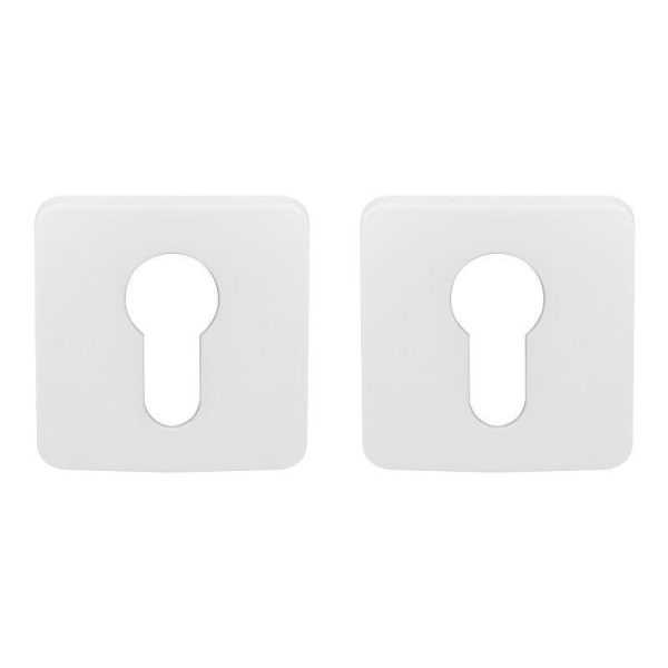 dvernaya nakladka colombo design pt 13 matovyj belyj pod klyuch roboquattros 47052 5fd68490a4bbb