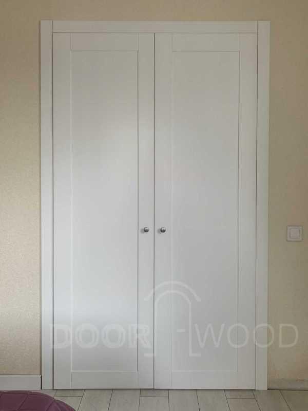 Двери в гардеробную комнату Крашенные двери
